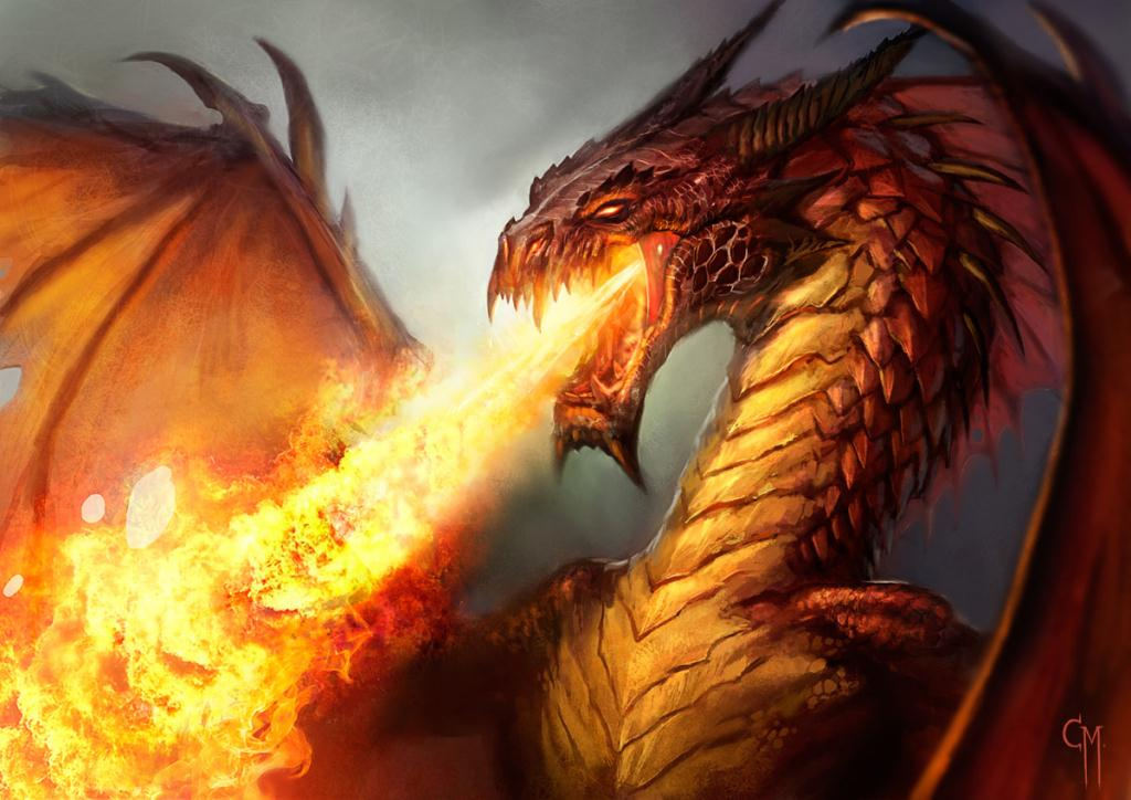 """Fight Back Like a Fire Breathing Dragon; I Will Not be Defeated"""