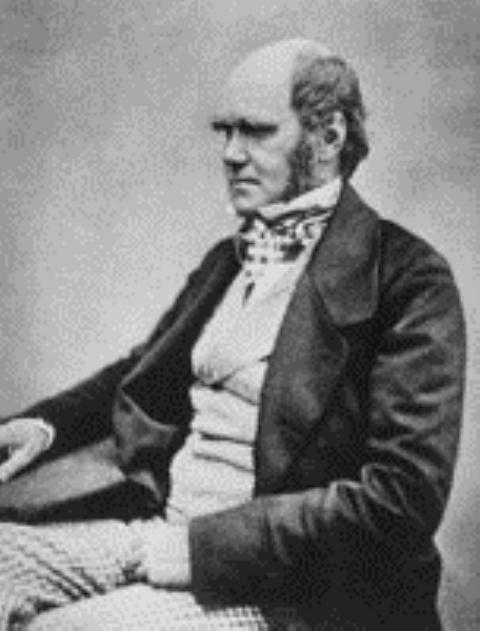 Darwin athiest  web.jpg