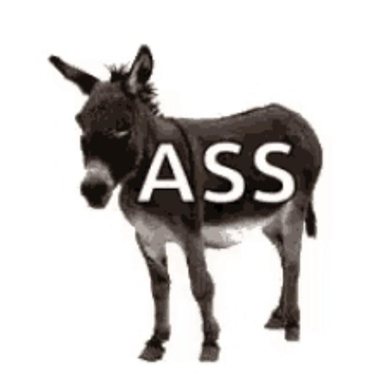 Donkey ASS on it sm  print.jpg