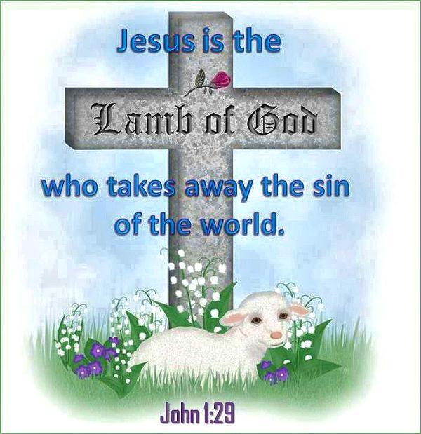 Lamb of God docu