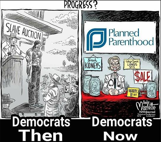 abortion satire cartoon web