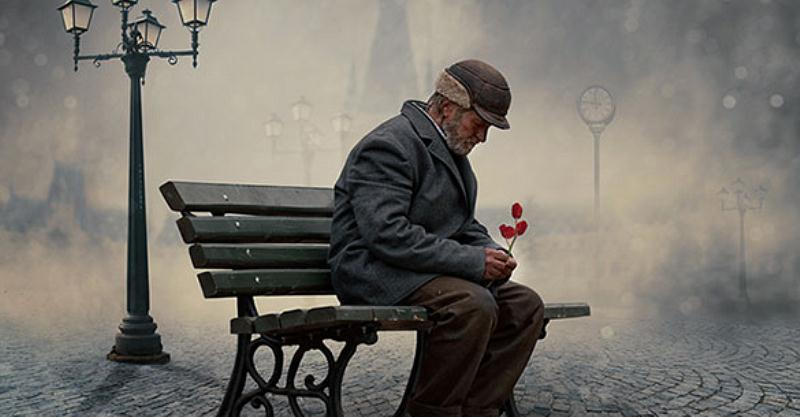 Old Man sitting in fog rose docu