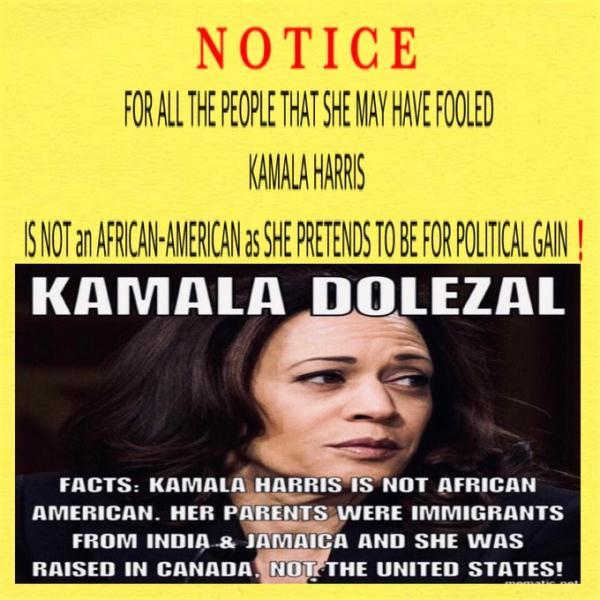 Kamala Fraud docu