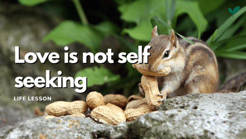 Love is not selfseeking