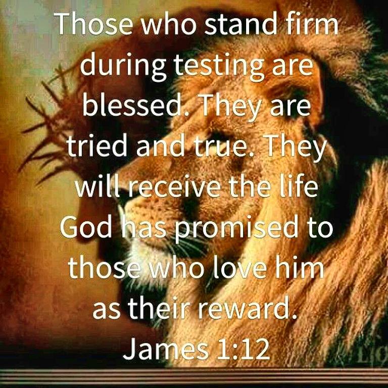 Jesus and lion sm print