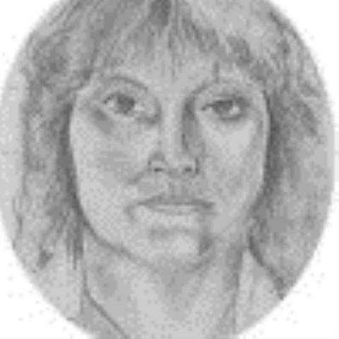 Joyce Bowen web