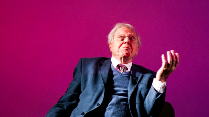 sir-david-attenborough-is-bringing-a-new-nature-show-from-home