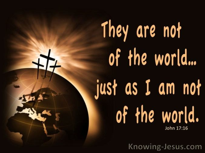 John 17-16 Not Of This World brown