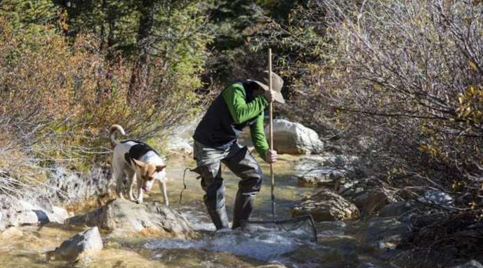 Rare-earths-make-their-way-to-Colorados-waterways